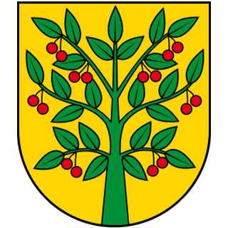 Gmina Wiśniew
